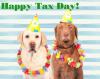 tax-dogs.png