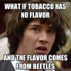 Tobacco Beetles.jpg