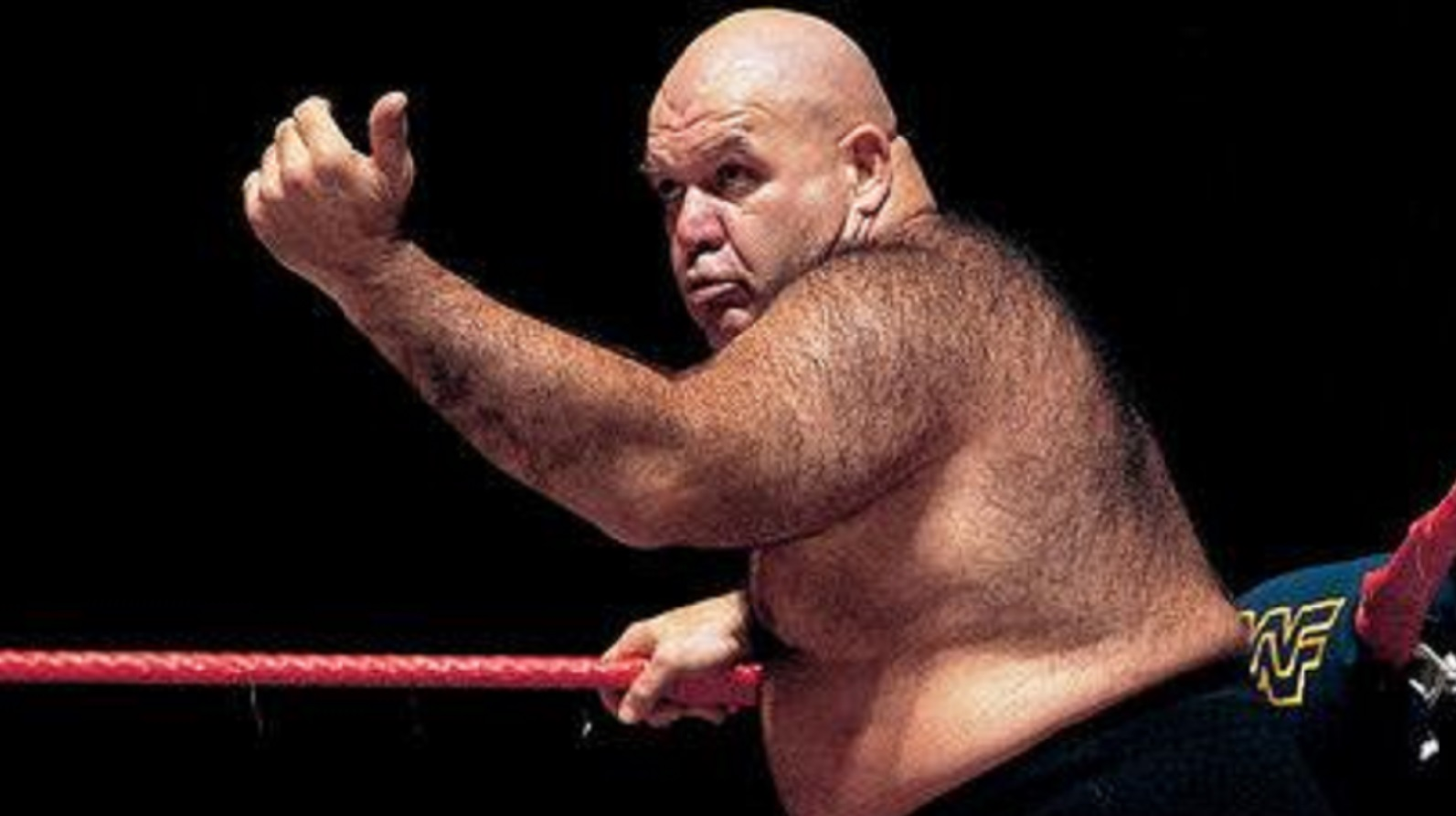George The Animan Steele